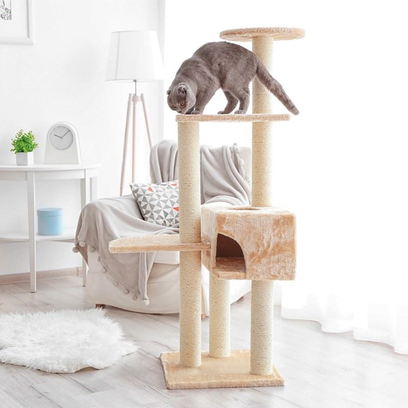 árbol del gato