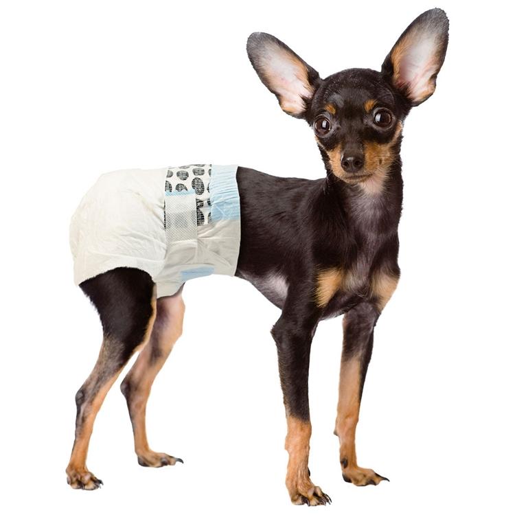 almohadillas cachorro